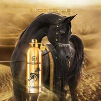 Montale Arabians - фото 62939